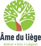 Liège pour isolation, décoration