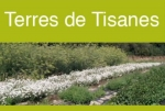 Producteur de Tisanes Bio